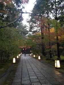 竹林寺の石畳