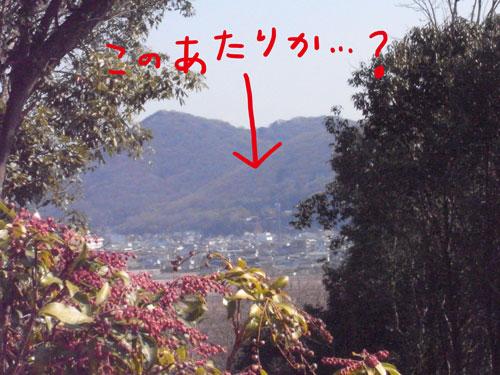 楯築遺跡から眺めた吉備津神社